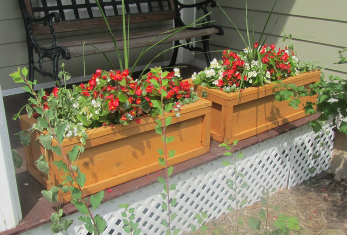 DIY Flower Boxes – A fun woodworking project for any skill level